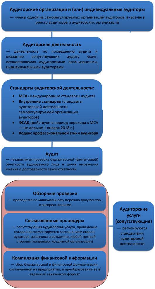 Структура деятельности аудиторских организаций